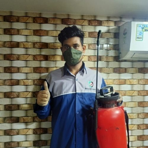pest control in Ghansoli thumsup